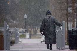 Snow falls steadily Saturday morning in Cathedral Commons in D.C. (WTOP/Dave Dildine)