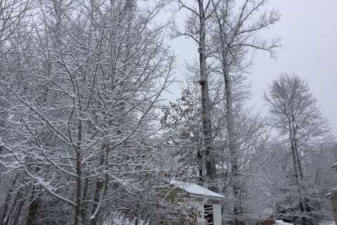 Snow dusts DC region Monday morning