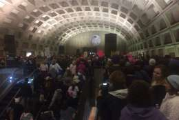 Crowds flood L'Enfant Plaza Metro station as people head toward the Women's March on Washington on Saturday, Jan. 21, 2017. (Courtesy Lauren Dunne)
