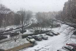 Outside the Glass-Enclosed Nerve Center in Northwest D.C., snow falls and coats the ground. (WTOP/Jamie Forzato)