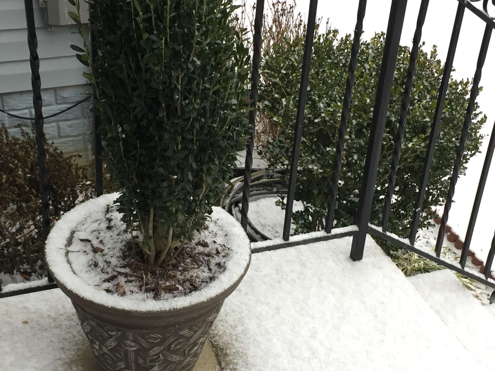 A light dusting of snow coated Charles County, Md. Saturday morning. (WTOP/Darci Marchese)