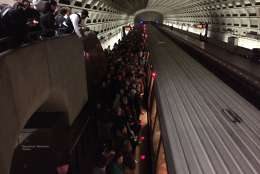 There wasn't much room on the trains as people headed into downtown D.C. for the Women's March on Washington. (WTOP/Dennis Foley)