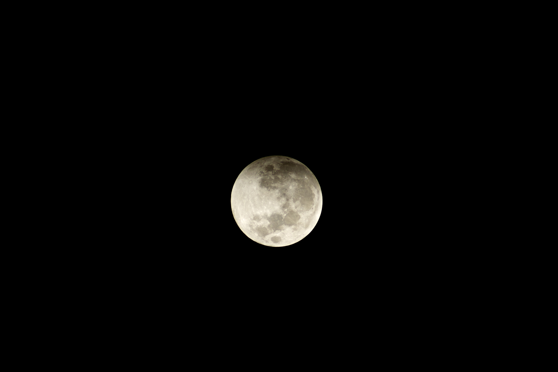 shadows new space program - photo #21