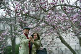 Fidelio Desbradel and his wife Leonor Desbradel, of the Dominican Republic, take a selfie in front of a Tulip Magnolia tree in Washington, Tuesday, Feb. 28, 2017. Crocuses, cherry trees, magnolia trees are blooming several weeks early because of an unusually warm February. Some climate experts say it looks like, because of an assist from global warming, spring has sprung what may be record early this year in about half the nation. (AP Photo/Cliff Owen)