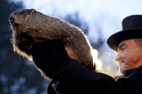 Groundhog Day 2018: What is Punxsutawney Phil's forecast?