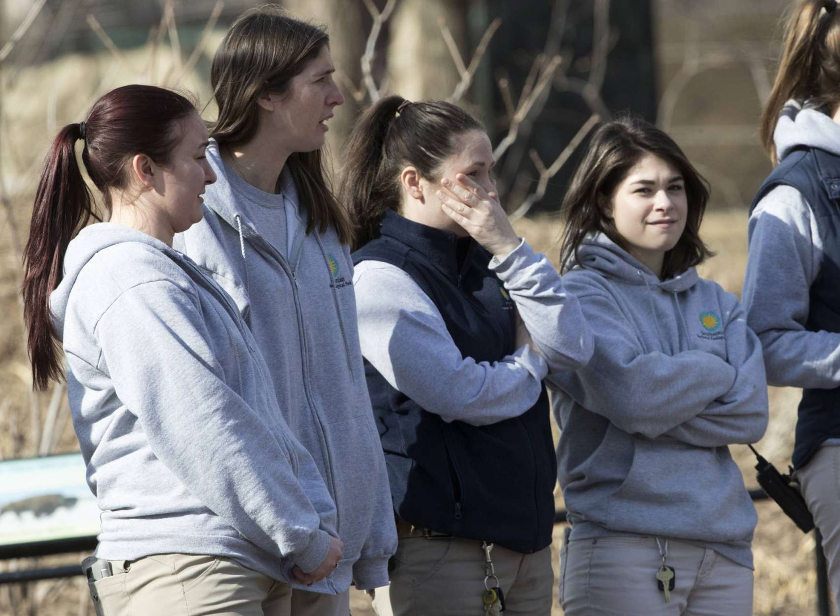 Animal keepers watch as Bao Bao, the beloved 3-year-old panda at the National Zoo in Washington, is loaded into a truck as she leaves on a one-way flight to China to join a panda breeding program, Tuesday, Feb. 21, 2017. (AP Photo/J. Scott Applewhite)
