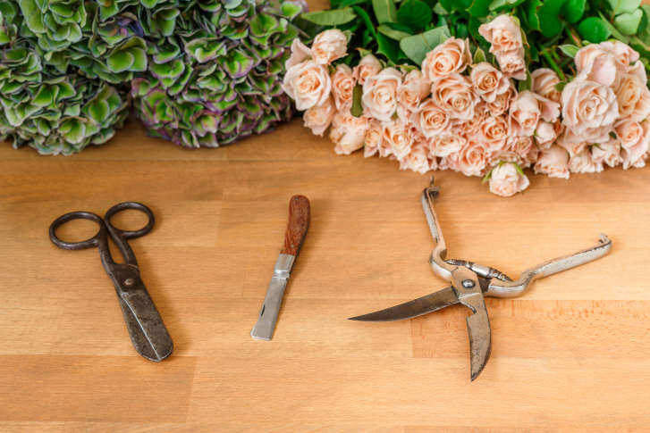 The science of keeping cut flowers fresh