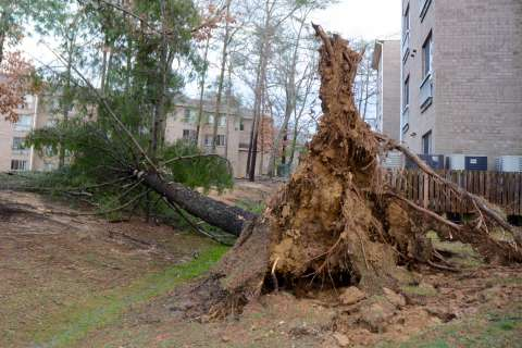 Rare winter tornado rips through Charles Co. (Photos)