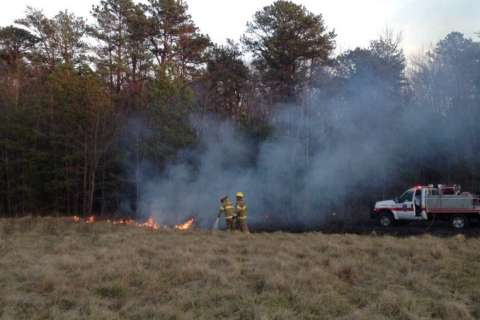 As DC region enters drought, brush fires on rise
