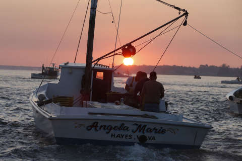 Concerns raised over Trump proposal to cut Chesapeake Bay funding