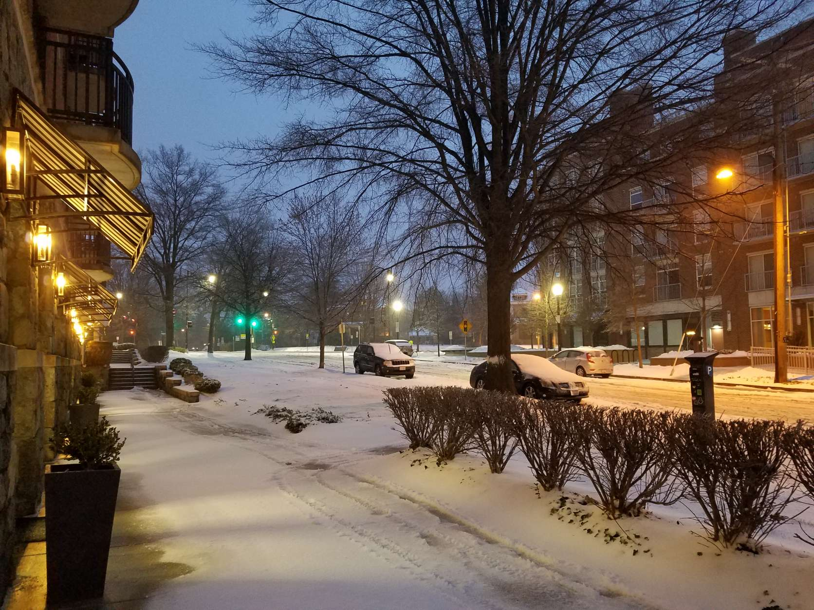 Snow blankets the Cathedral Heights neighborhood in Northwest D.C. (WTOP/Will Vitka)