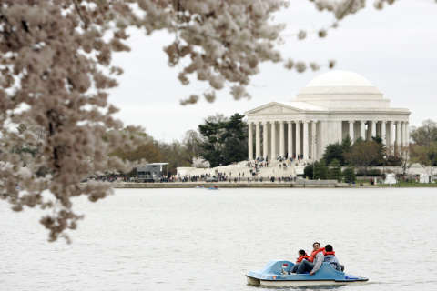 What to do in DC this spring
