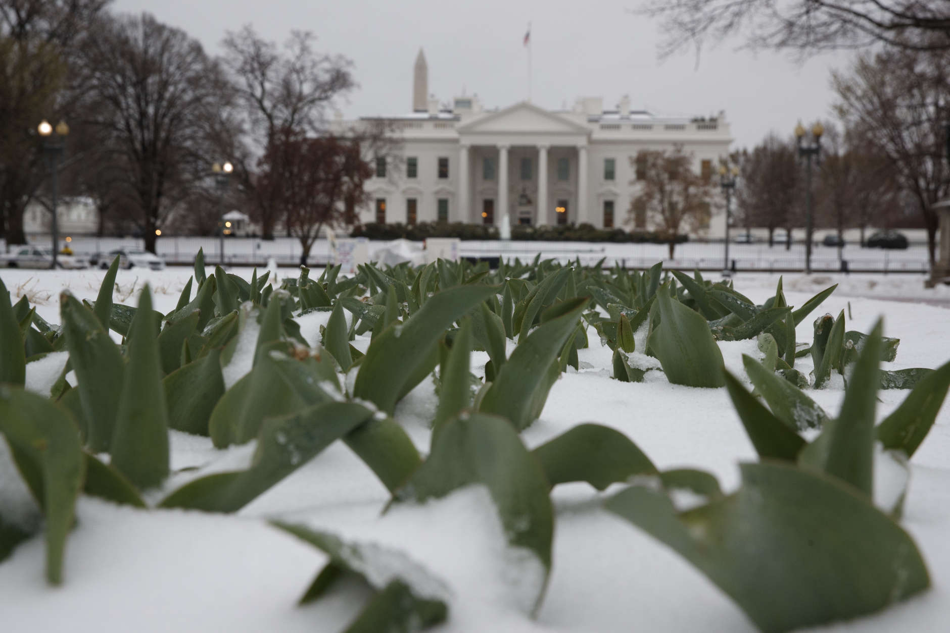 Snow covers the ground in Lafayette Park across from the White House in Washington, Tuesday, March 14, 2017. A late-season storm is dumping a messy mix of snow, sleet and rain on the mid-Atlantic, complicating travel, knocking out power and closing schools and government offices around the region. (AP Photo/Evan Vucci)