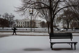 Snow covers the ground outside of the White House in Washington, Tuesday, March 14, 2017. A late-season storm is dumping a messy mix of snow, sleet and rain on the mid-Atlantic, complicating travel, knocking out power and closing schools and government offices around the region. (AP Photo/Evan Vucci)