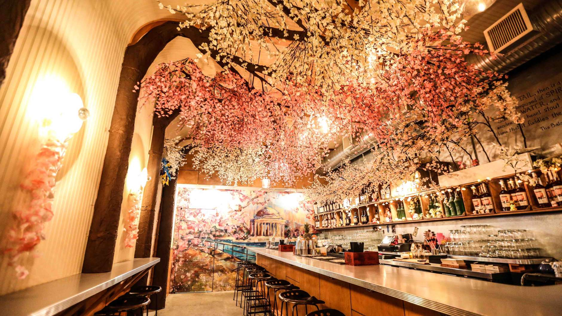 Celebrate DCs Cherry Blossoms At Themed Popup Bar WTOP - Washington dc pop up map