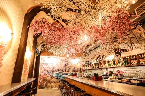 Celebrate the cherry blossoms with cocktails at new pop-up bar