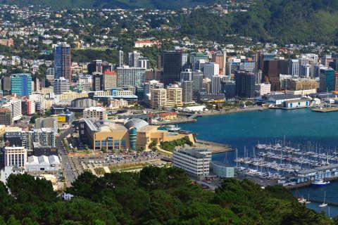 New Zealand's bid for high-tech talent