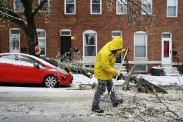 A worker clears debris after a tree branch fell on a parked car in Baltimore, Tuesday, March 14, 2017, as a winter storm moves through the region. (AP Photo/Patrick Semansky)