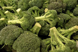 """FILE – In this March 20, 2009, file photo mounds of fresh broccoli are on display in the produce section of an Arlington, Va., grocery. A team of researchers and agricultural agents want to take a bite out of the West Coast's $1 billion broccoli monopoly by creating an East Coast network of farmers to feed a growing U.S. appetite for the stalky vegetable. The initiative is driven by rising fuel costs to ship crates of broccoli in refrigerated trucks from California fields to East Coast grocery coolers, the """"grow local"""" movement and concerns about creating a sustainable, diversified food network. (AP Photo/J. Scott Applewhite, File)"""