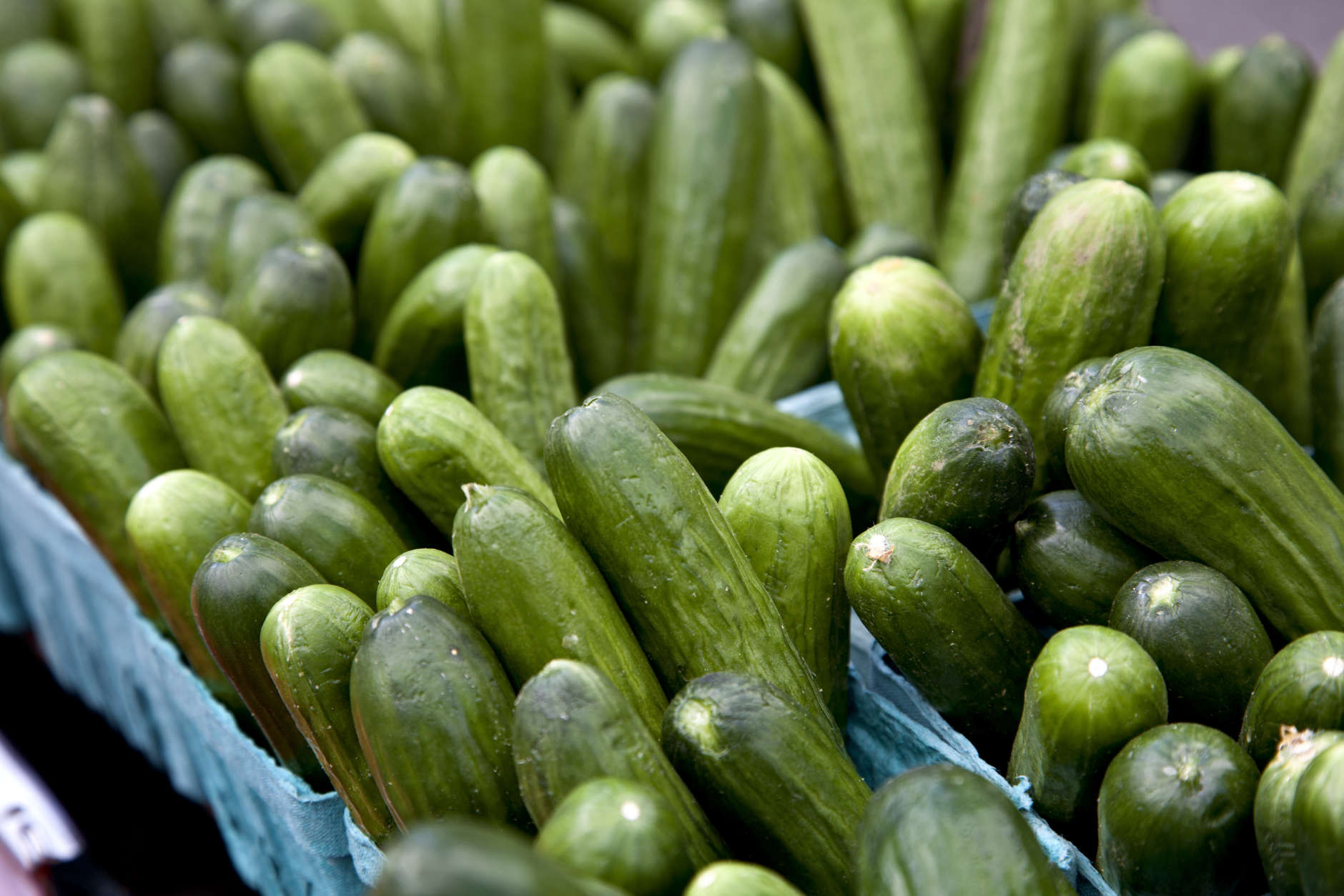 Cucumbers and other fresh produce are displayed for sale at a farmers market in Arlington, Va., Saturday, April 13, 2013.  (AP Photo/J. Scott Applewhite)