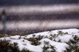 winter weather sleet snow ice dildine