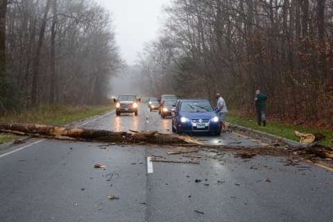 Storm rolls through DC area leaving downed trees, power outages