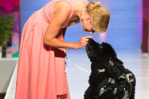 Bravo star Carson Kressley returns to host annual Fashion for Paws event