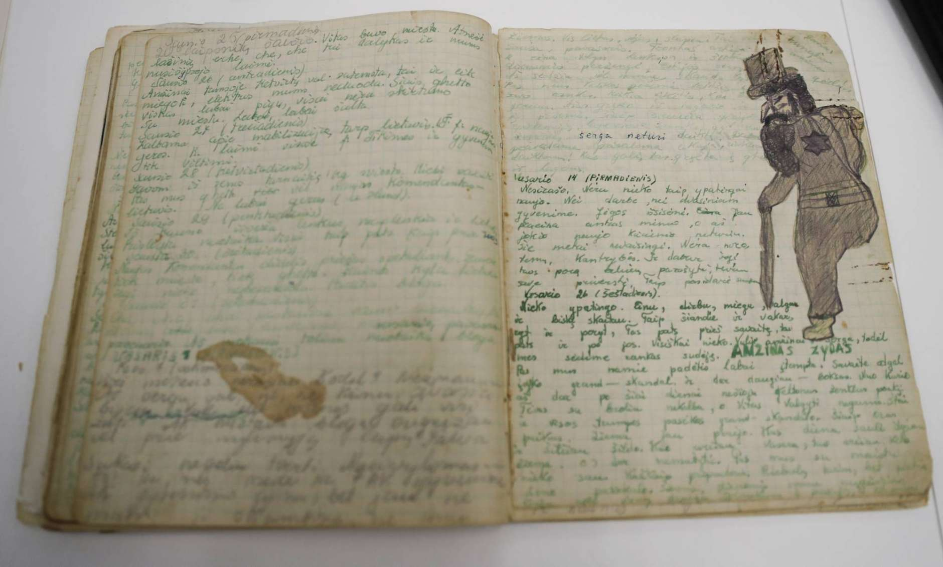 The diary of Tamara Lazerson, written during the Holocaust, is seen at the U.S. Holocaust Memorial Museum's David and Fela Shapell Family Collections, Conservation and Research Center in Bowie, Md., Monday, April 24, 2017. The Shapell Center is a new state-of-the-art facility that will house the collection of record of the Holocaust. (AP Photo/Carolyn Kaster)