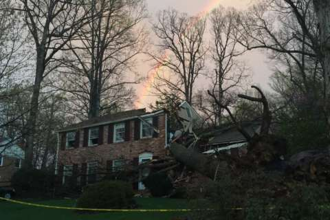 Photos: Severe weather rips through DC area