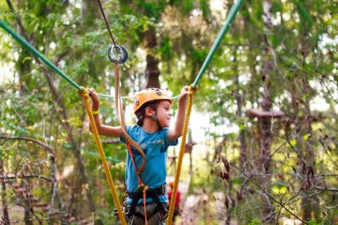 Every Day is Kids' Day: The chaos of summer camp — addressing costs, schedules, concerns