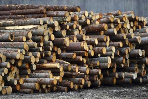 Virginia lumber company fined $24K for worker's death