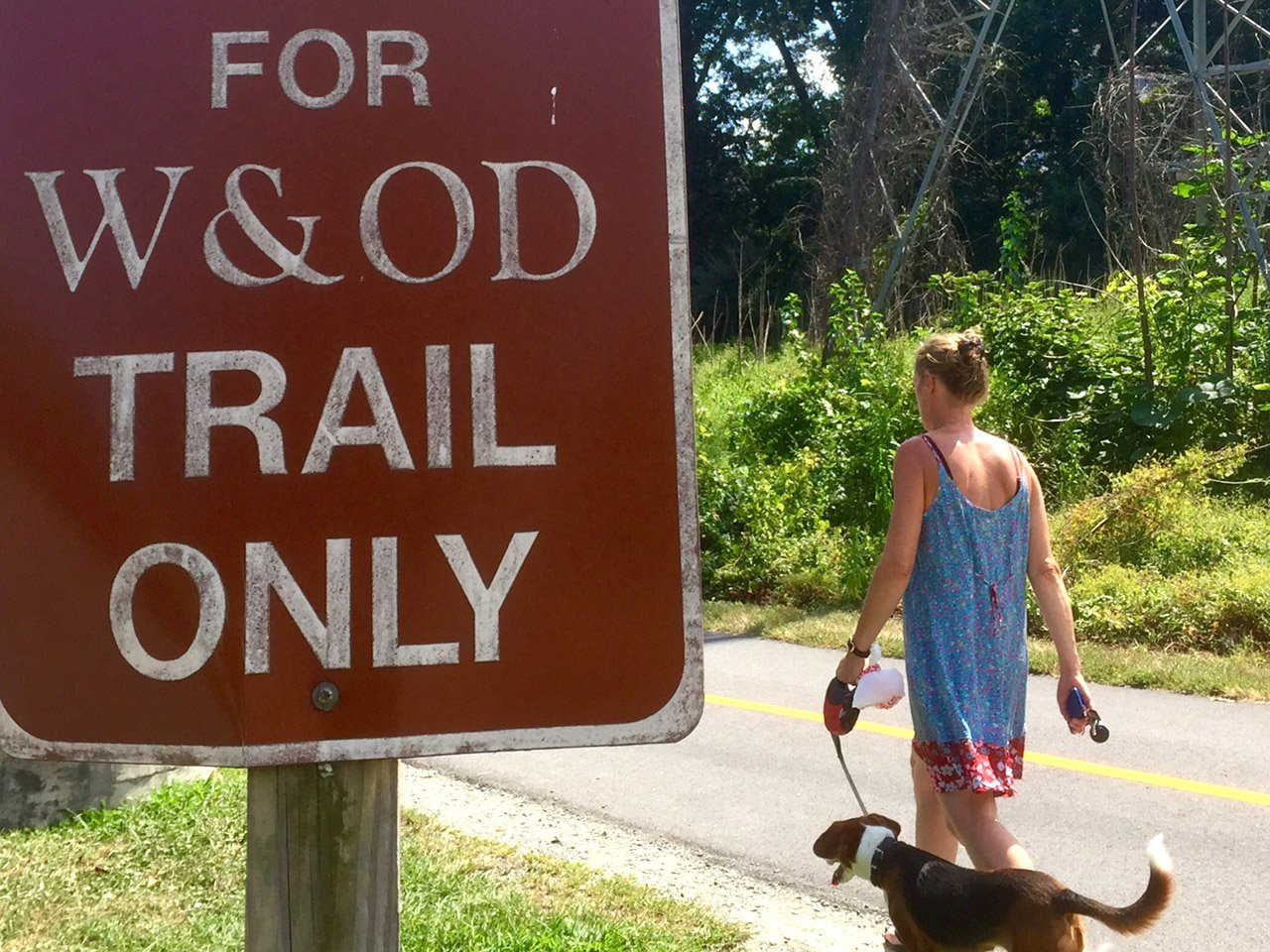 A woman walks a dog along the W&OD Trail in this Aug. 30, 2016 file photo. (WTOP/Dave Dildine)