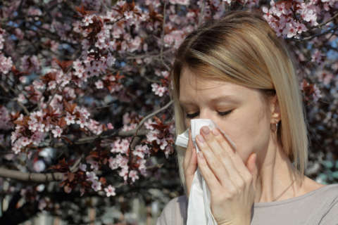 Seasonal allergy onslaught kicks off springtime