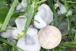 Quarter-sized hail stones fall during the April 21, 2017 storm in the D.C. area. (Courtesy Don Squires)