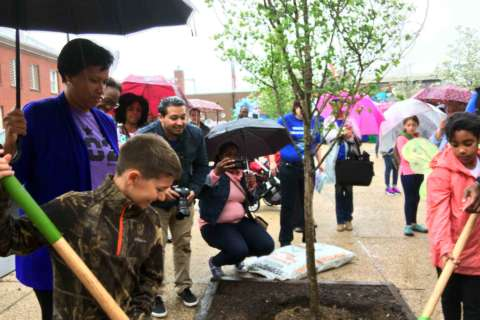 New composting initiative in DC introduced on Earth Day