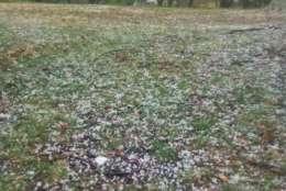 Hail pummeled Mechanicsville, Maryland. (Courtesy Bill Reid)