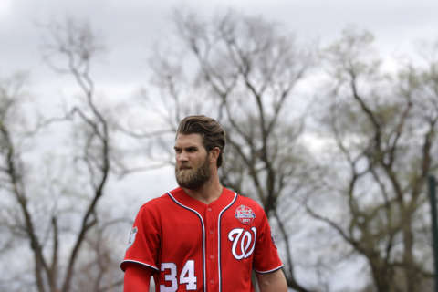 Nationals 2017 roster unveiled