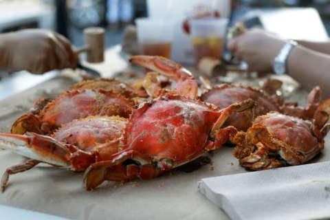 WTOP TOP 10: Best Crabs