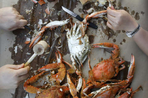 Crab season is here: How to select, cook the best crabs