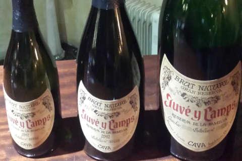 Wine of the Week: Cava on my mind