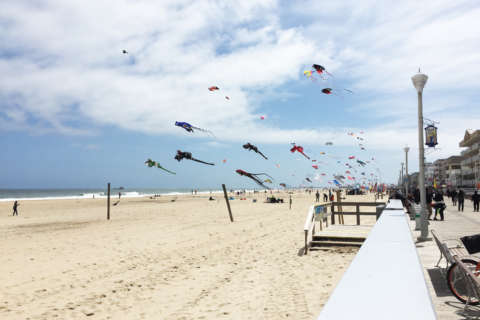Ocean City beach guide