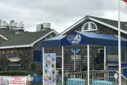 "<a href=""http://bjsonthewater.com/our-menu/""><strong>BJ's on the Water</strong></a> <em>115 75th St, Ocean City, Maryland </em>  WTOP's Julia Ziegler says BJ's has great views of the bay, free popcorn at the bar and live music. Her go-to order is the seafood skins, which she describes as ""a great mix of potato skins and seafood salad, topped with cheese. You won't regret it!"" (WTOP/Megan Cloherty)"