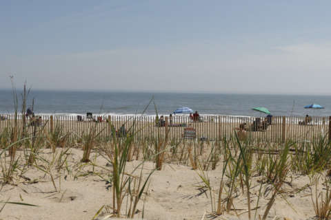 Rehoboth Beach doubles tax for renters
