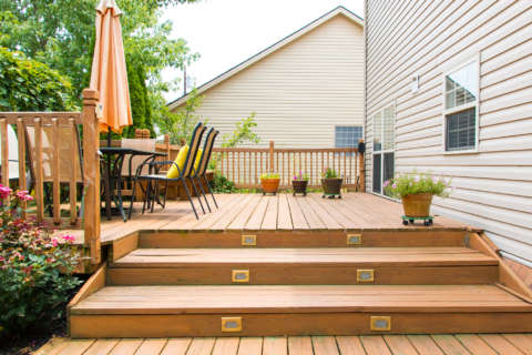 Tools to protect decks, fruit trees, young plants and grass