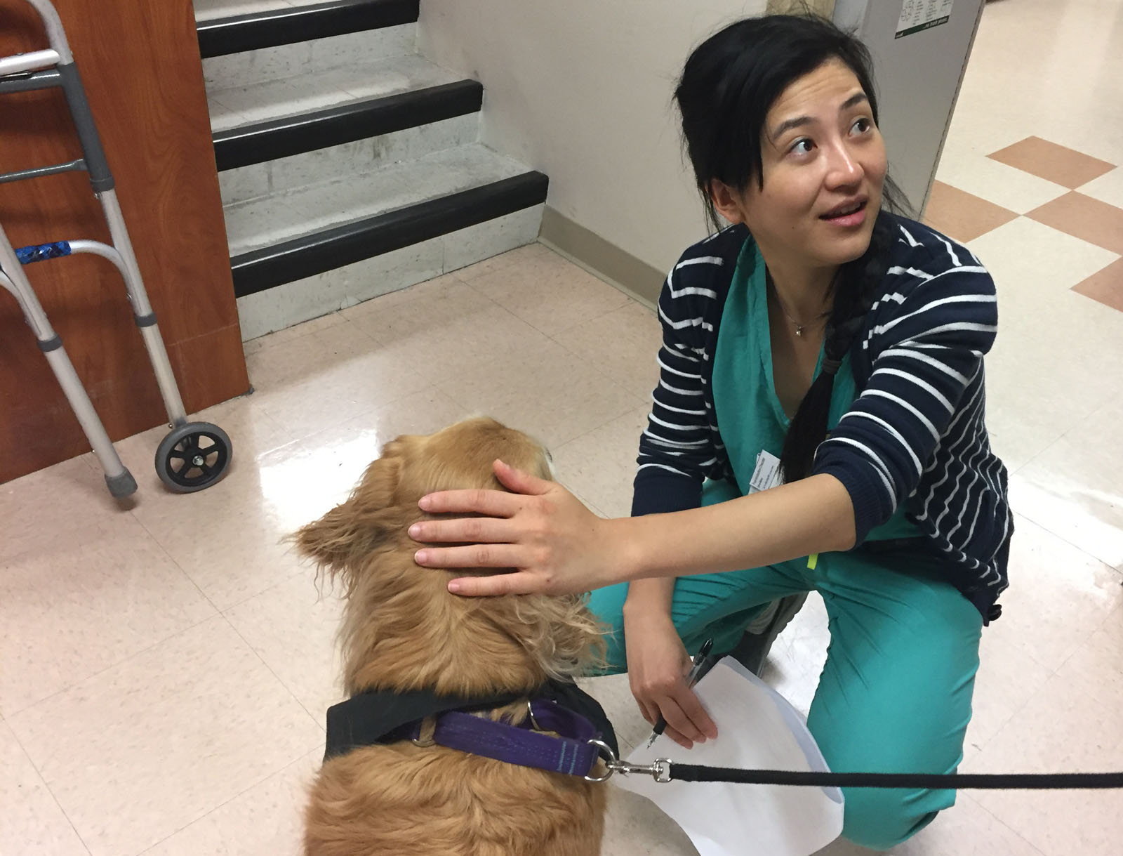 Nurses and other staffers at MedStar Washington Hospital Center enjoyed visits from three therapy dogs brought on Thursday especially for them as part of National Nurses Week. (WTOP/Michelle Basch)