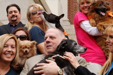 Md. governor signs laws to protect man's best friend