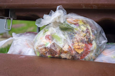 Majority of Prince George's Co. residents say once-a-week trash pickup stinks