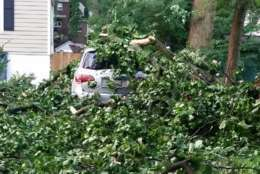 Fallout after tornado packing 70 mile an hour winds hit this neighborhood in Silver Spring, Maryland on Monday. (WTOP/Kathy Stewart)
