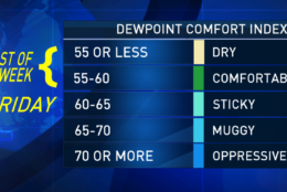 Most of the week, dew point temperatures will be in the 40s and 50s, meaning there won't be a lot of moisture in the air. That, of course, means even when it's warm, it will feel dry. It's not until the end of the week that the dew points will start climbing back up to uncomfortable levels. Remember, the higher the dew point, the more moisture there is in the air. (WTOP/Storm Team 4)