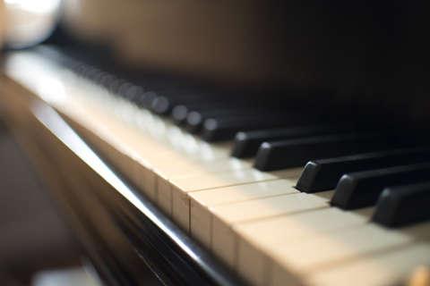 Video: Black bear breaks into Colorado home, plays piano